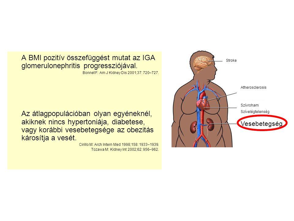 A BMI pozitív összefüggést mutat az IGA glomerulonephritis progressziójával. Bonnet F: Am J Kidney Dis 2001;37: 720–727. Az átlagpopulációban olyan eg