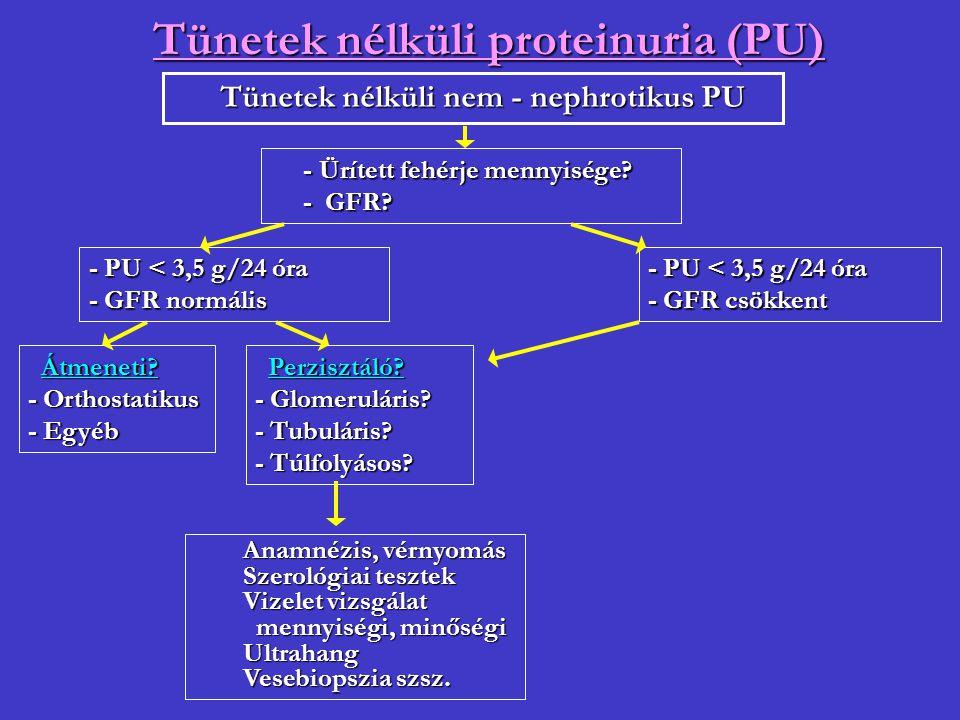 Tünetek nélküli proteinuria (PU) Tünetek nélküli nem - nephrotikus PU Tünetek nélküli nem - nephrotikus PU - Ürített fehérje mennyisége? - GFR? - GFR?