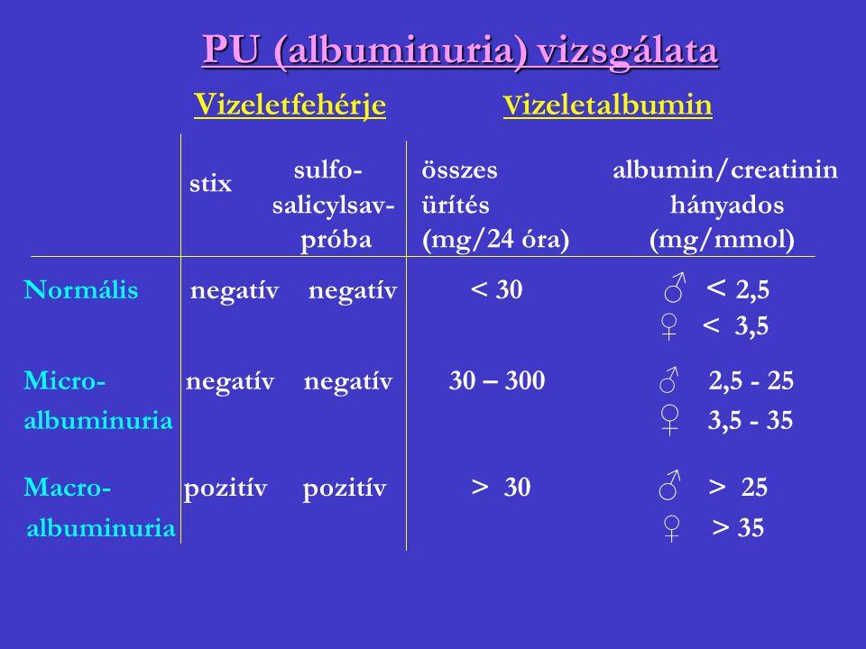 PU (albuminuria) vizsgálata Vizeletfehérje V izeletalbumin stix sulfo- salicylsav- próba összes ürítés (mg/24 óra) albumin/creatinin hányados (mg/mmol