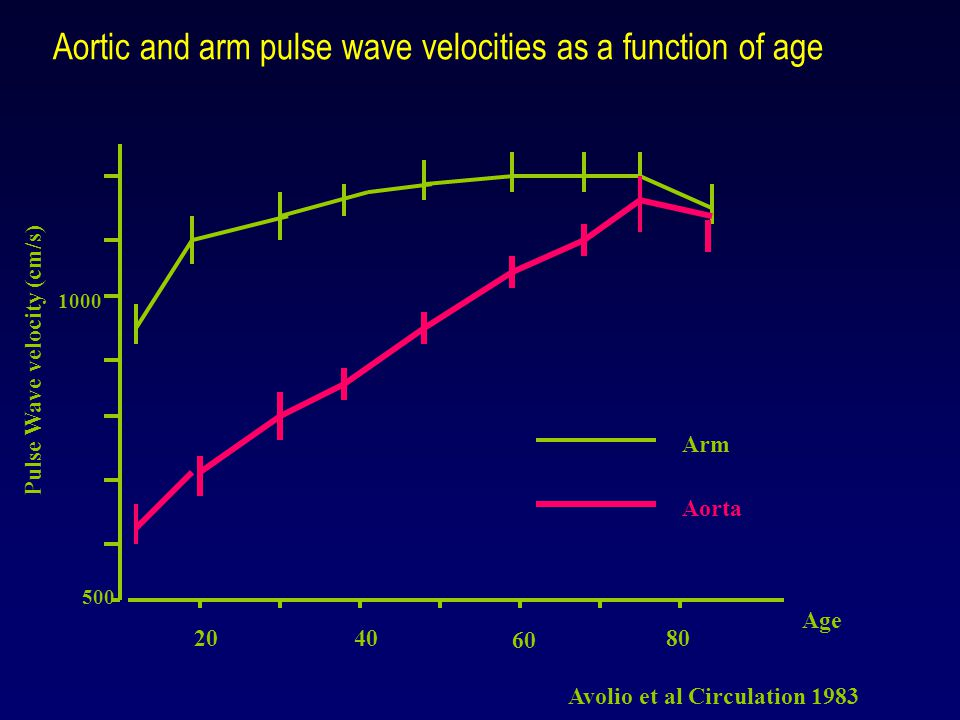 2040 60 80 500 1000 Pulse Wave velocity (cm/s) Age Arm Aorta Aortic and arm pulse wave velocities as a function of age Avolio et al Circulation 1983