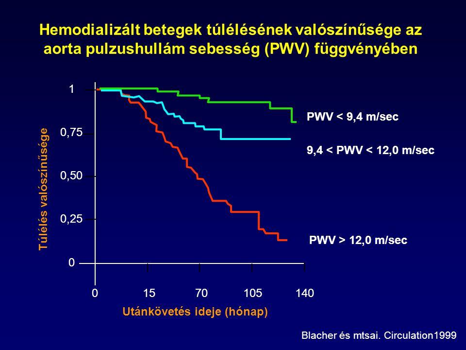 Hemodializált betegek túlélésének valószínűsége az aorta pulzushullám sebesség (PWV) függvényében PWV < 9,4 m/sec 9,4 < PWV < 12,0 m/sec PWV > 12,0 m/sec Utánkövetés ideje (hónap) Blacher és mtsai.