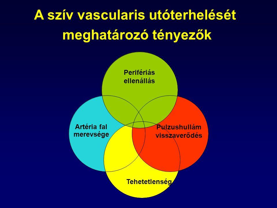A szív vascularis utóterhelését meghatározó tényezők Artéria fal merevsége Pulzushullám visszaverődés Perifériás ellenállás Tehetetlenség