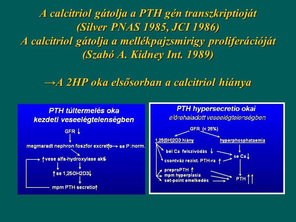 A calcitriol gátolja a PTH gén transzkriptioját (Silver PNAS 1985, JCI 1986) A calcitriol gátolja a mellékpajzsmirigy proliferációját (Szabó A.