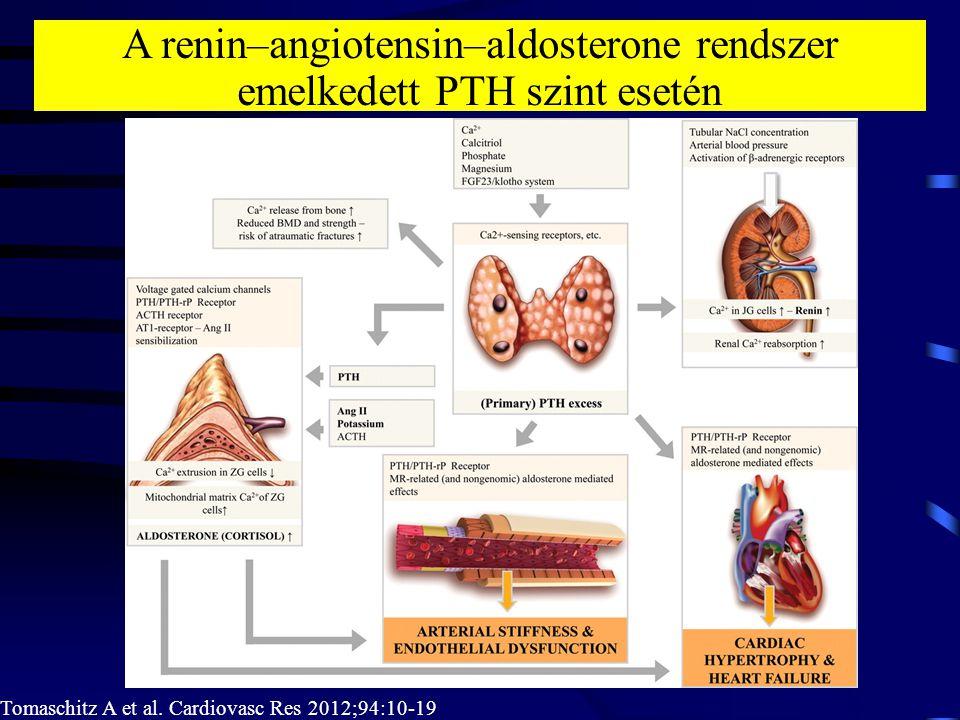 A renin–angiotensin–aldosterone rendszer emelkedett PTH szint esetén Tomaschitz A et al. Cardiovasc Res 2012;94:10-19