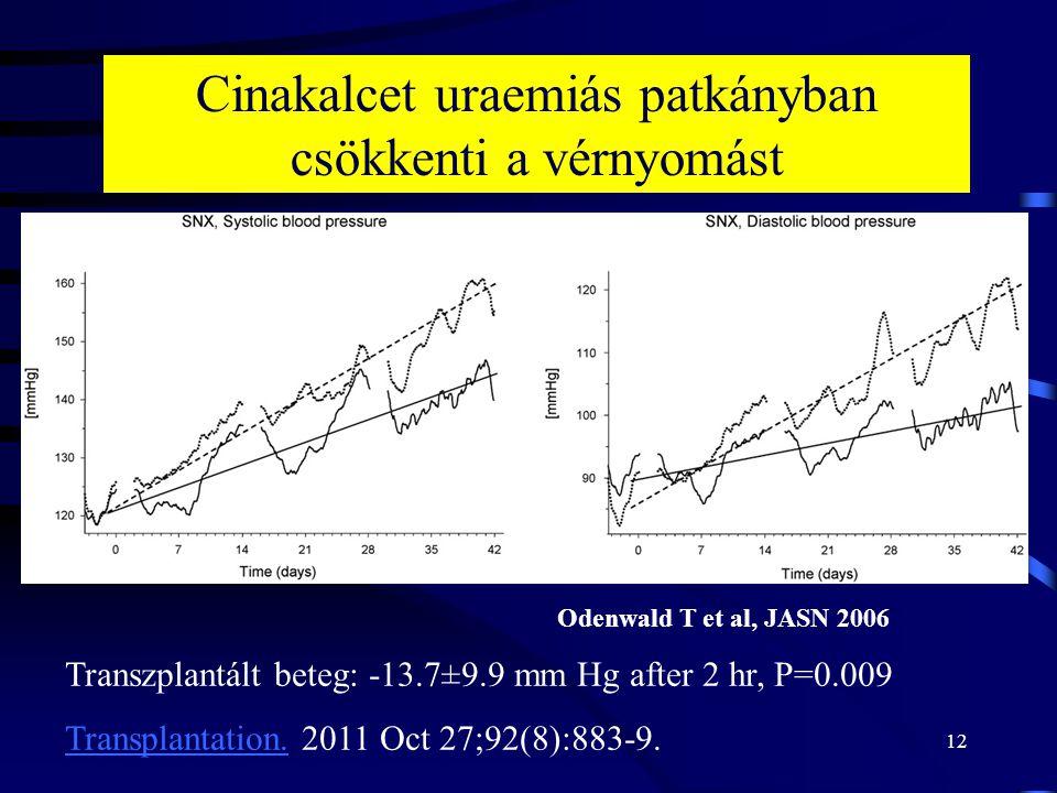 12 Odenwald T et al, JASN 2006 Cinakalcet uraemiás patkányban csökkenti a vérnyomást Transzplantált beteg: -13.7±9.9 mm Hg after 2 hr, P=0.009 Transplantation.Transplantation.