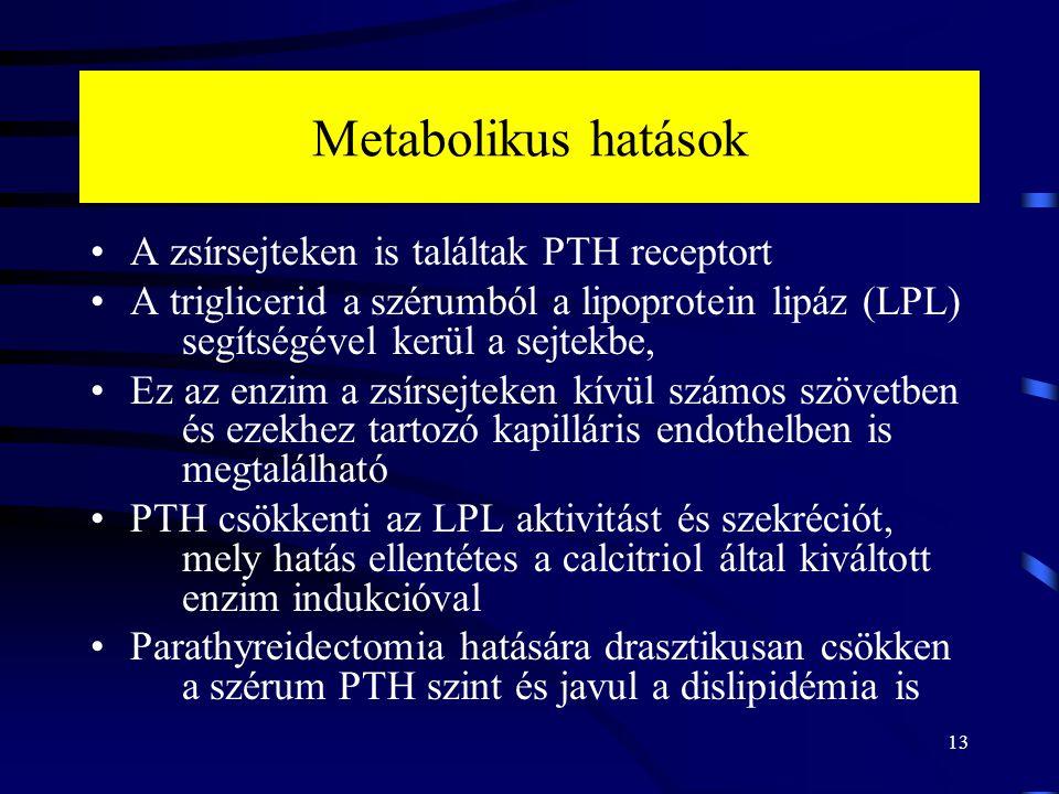 Metabolikus hatások A zsírsejteken is találtak PTH receptort A triglicerid a szérumból a lipoprotein lipáz (LPL) segítségével kerül a sejtekbe, Ez az enzim a zsírsejteken kívül számos szövetben és ezekhez tartozó kapilláris endothelben is megtalálható PTH csökkenti az LPL aktivitást és szekréciót, mely hatás ellentétes a calcitriol által kiváltott enzim indukcióval Parathyreidectomia hatására drasztikusan csökken a szérum PTH szint és javul a dislipidémia is 13