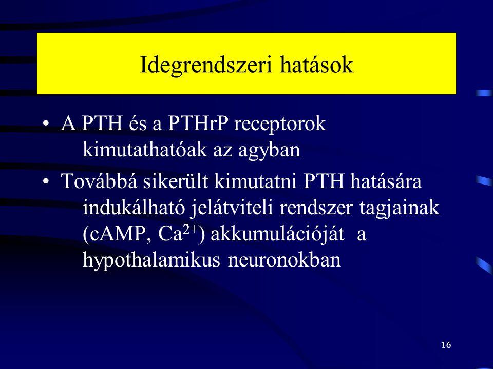 Idegrendszeri hatások A PTH és a PTHrP receptorok kimutathatóak az agyban Továbbá sikerült kimutatni PTH hatására indukálható jelátviteli rendszer tagjainak (cAMP, Ca 2+ ) akkumulációját a hypothalamikus neuronokban 16