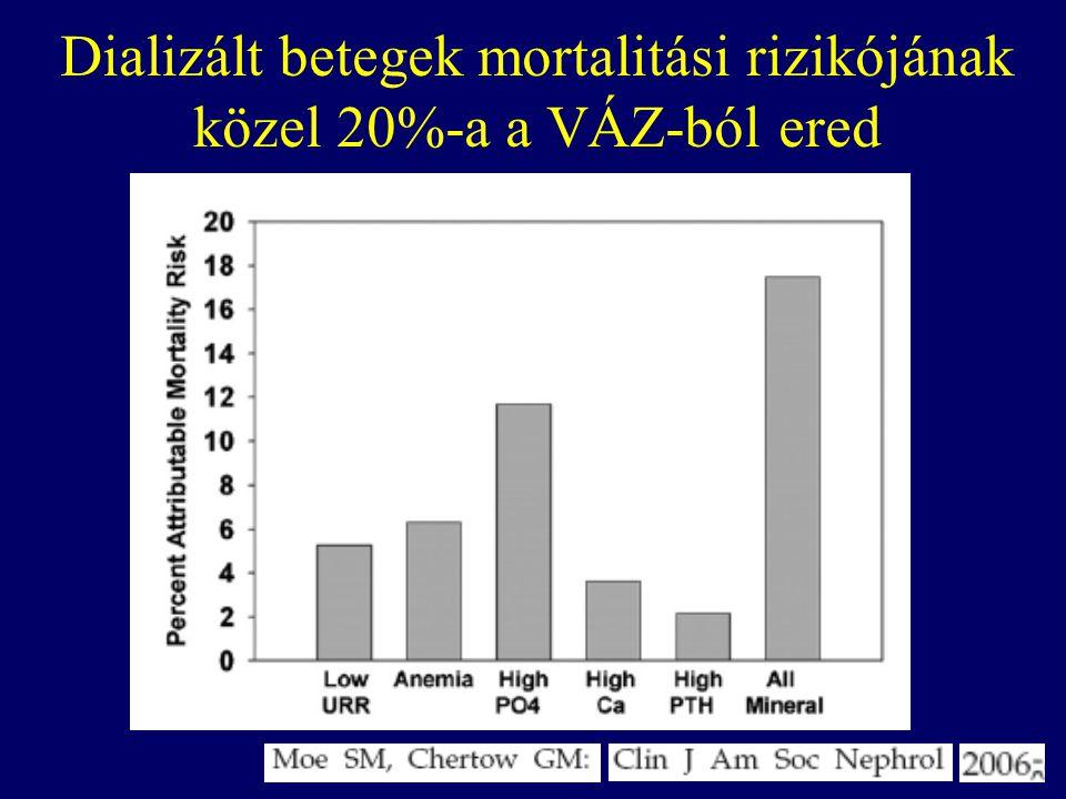 Dializált betegek mortalitási rizikójának közel 20%-a a VÁZ-ból ered