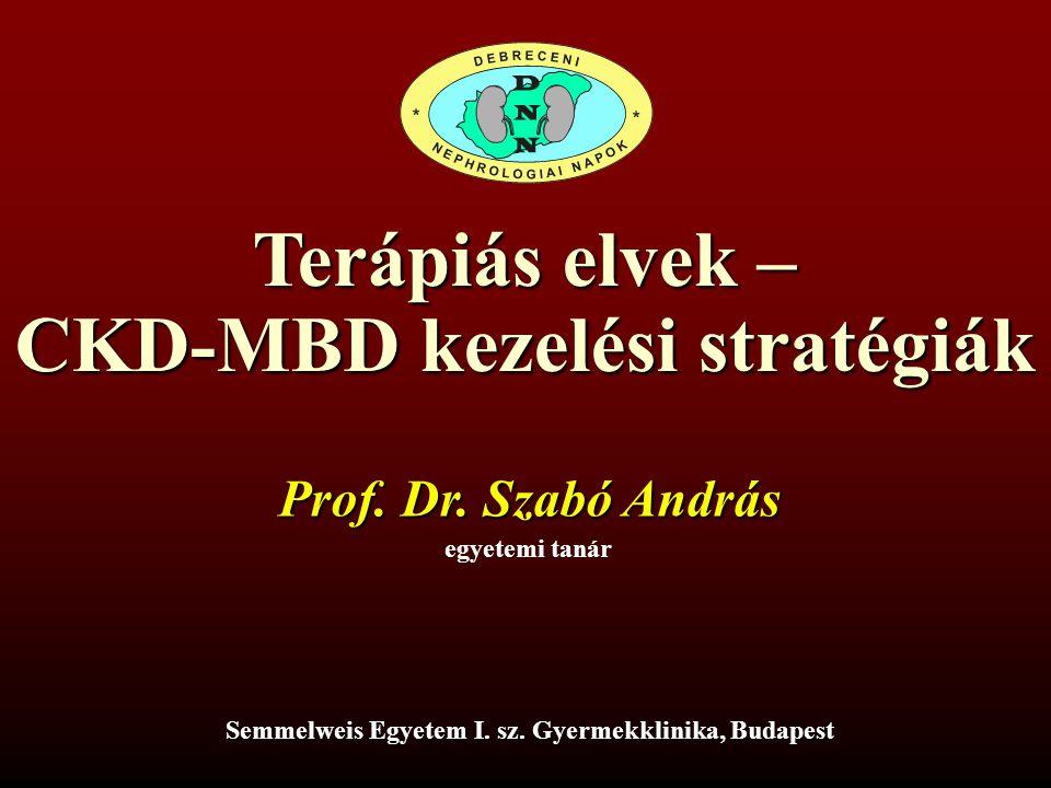 Terápiás elvek – CKD-MBD kezelési stratégiák Prof. Dr. Szabó András egyetemi tanár Semmelweis Egyetem I. sz. Gyermekklinika, Budapest