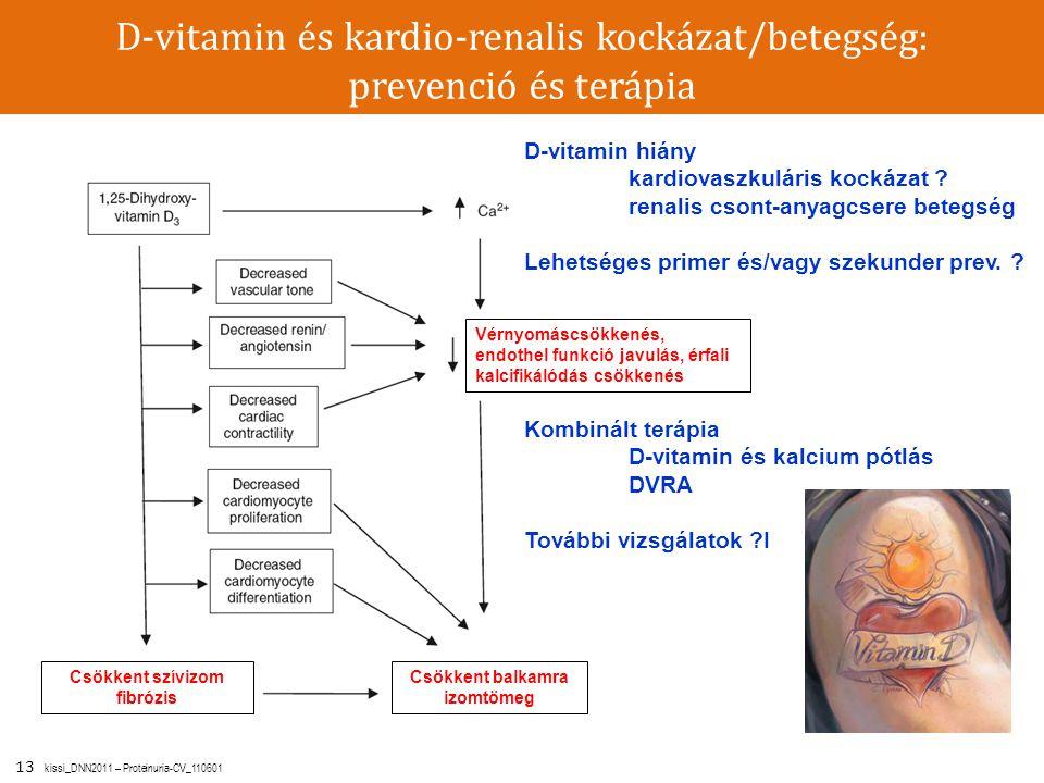 13 kissi_DNN2011 – Proteinuria-CV_110601 D-vitamin és kardio-renalis kockázat/betegség: prevenció és terápia Csökkent balkamra izomtömeg Csökkent szív