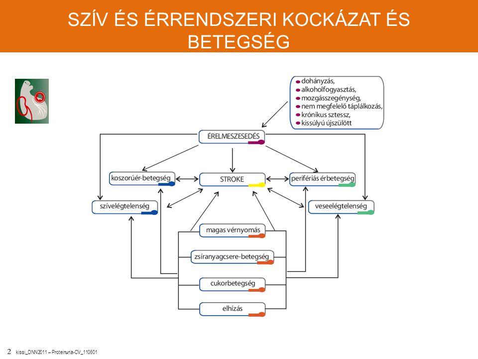 2 kissi_DNN2011 – Proteinuria-CV_110601 SZÍV ÉS ÉRRENDSZERI KOCKÁZAT ÉS BETEGSÉG