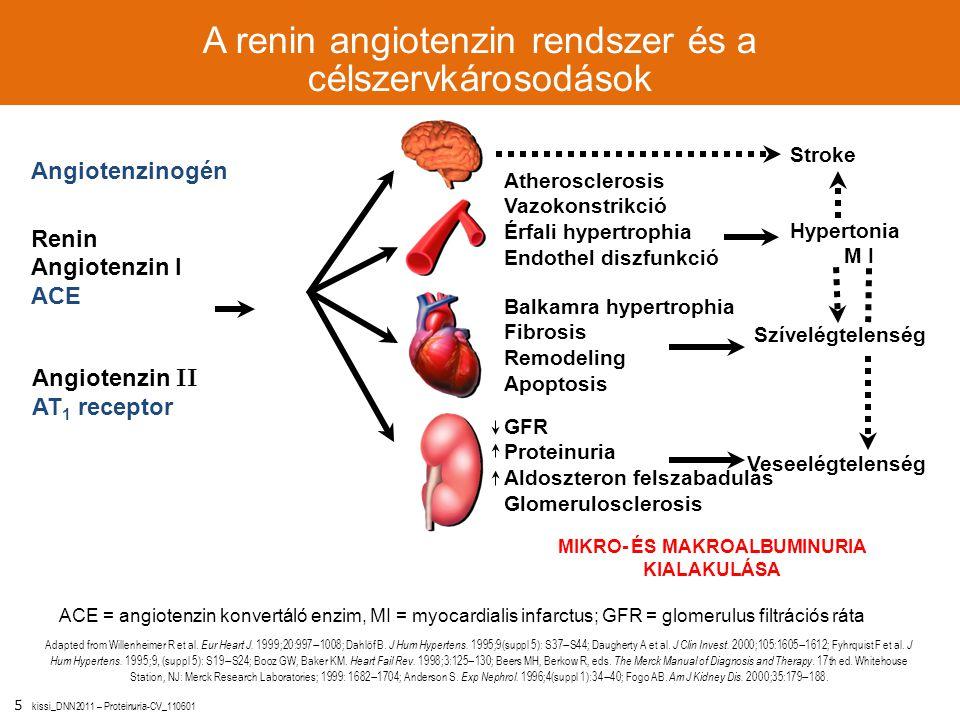 5 kissi_DNN2011 – Proteinuria-CV_110601 GFR Proteinuria Aldoszteron felszabadulás Glomerulosclerosis A renin angiotenzin rendszer és a célszervkárosod