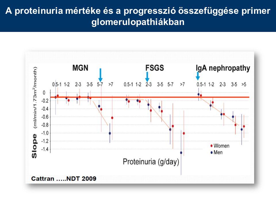 A proteinuria mértéke és a progresszió összefüggése primer glomerulopathiákban