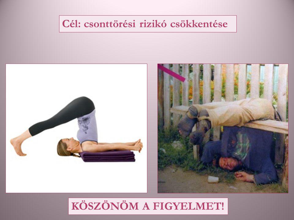 KÖSZÖNÖM A FIGYELMET! Cél: csonttörési rizikó csökkentése