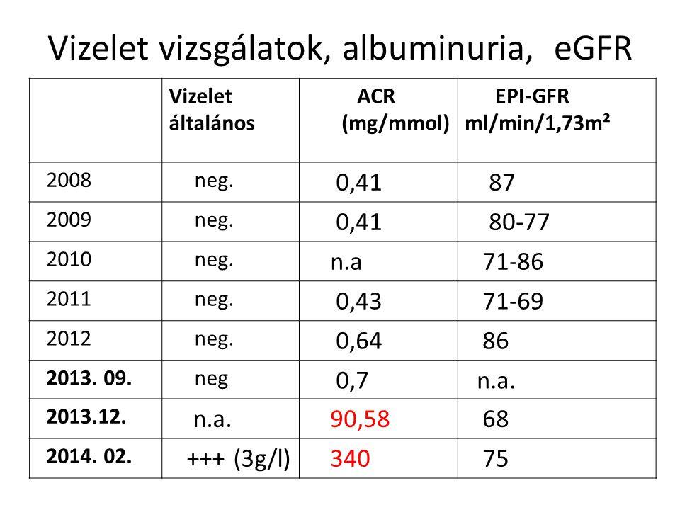 Vizelet vizsgálatok, albuminuria, eGFR Vizelet általános ACR (mg/mmol) EPI-GFR ml/min/1,73m² mml/pc/1,73m 2 2008 neg. 0,41 87 2009 neg. 0,41 80-77 201