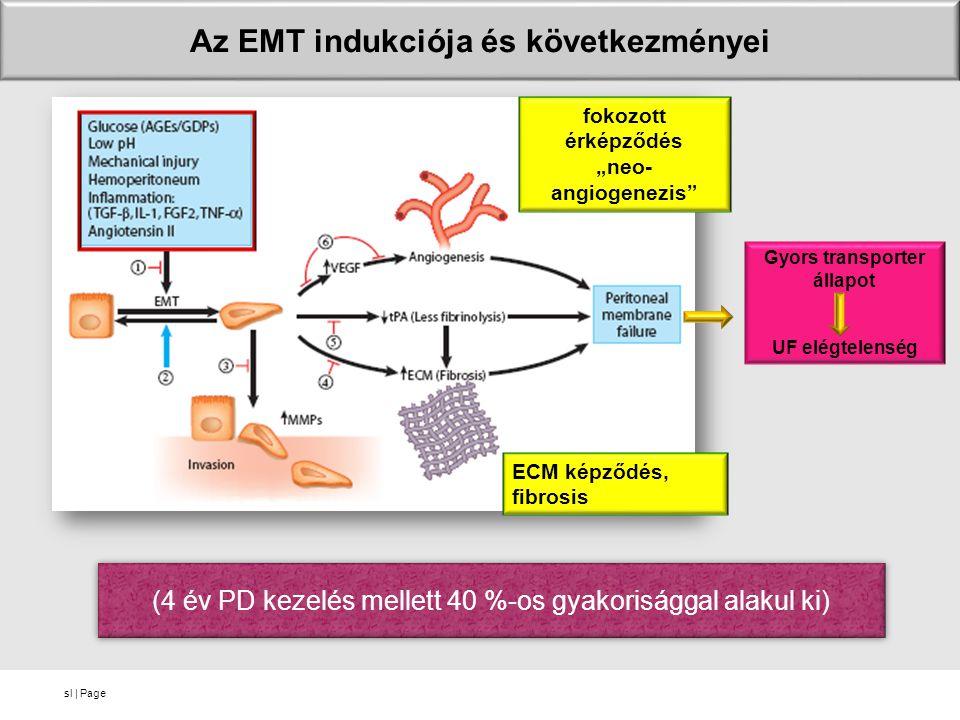 """sl   Page Az EMT indukciója és következményei fokozott érképződés """"neo- angiogenezis"""" ECM képződés, fibrosis Gyors transporter állapot UF elégtelenség"""