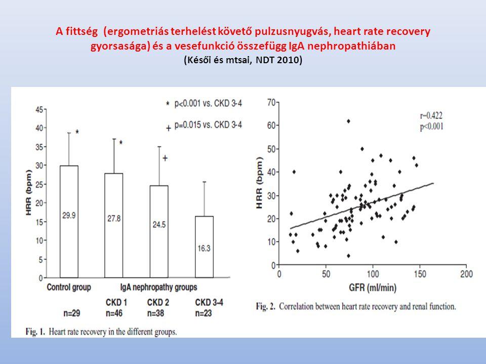 A fittség (ergometriás terhelést követő pulzusnyugvás, heart rate recovery gyorsasága) és a vesefunkció összefügg IgA nephropathiában (Késői és mtsai, NDT 2010)