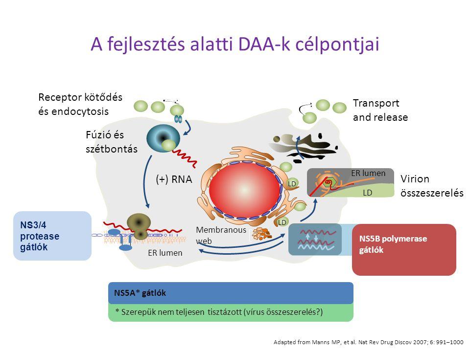 A fejlesztés alatti DAA-k célpontjai Adapted from Manns MP, et al. Nat Rev Drug Discov 2007; 6: 991–1000 Receptor kötődés és endocytosis Fúzió és szét