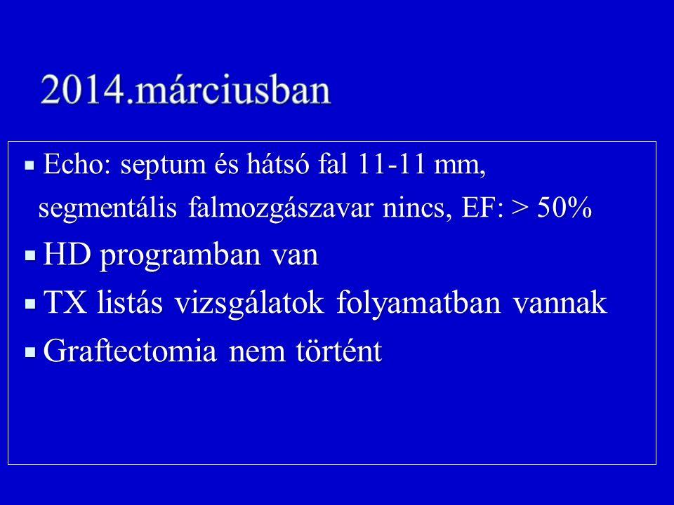 Echo: septum és hátsó fal 11-11 mm, segmentális falmozgászavar nincs, EF: > 50% segmentális falmozgászavar nincs, EF: > 50%  HD programban van  TX listás vizsgálatok folyamatban vannak  Graftectomia nem történt