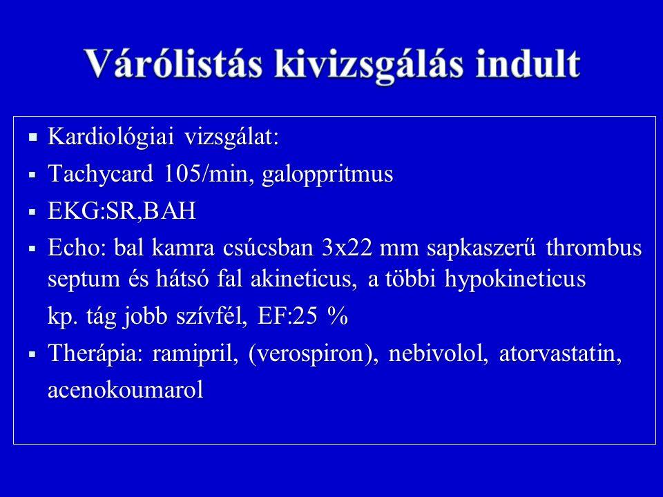  Kardiológiai vizsgálat:  Tachycard 105/min, galoppritmus  EKG:SR,BAH  Echo: bal kamra csúcsban 3x22 mm sapkaszerű thrombus septum és hátsó fal akineticus, a többi hypokineticus kp.