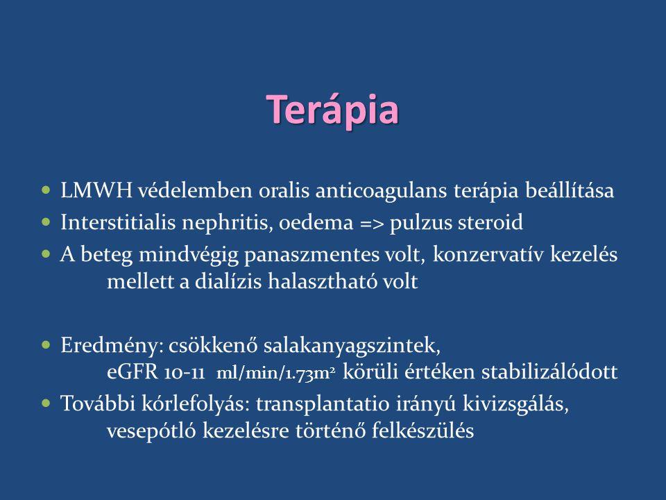 Terápia LMWH védelemben oralis anticoagulans terápia beállítása Interstitialis nephritis, oedema => pulzus steroid A beteg mindvégig panaszmentes volt, konzervatív kezelés mellett a dialízis halasztható volt Eredmény: csökkenő salakanyagszintek, eGFR 10-11 ml/min/1.73m 2 körüli értéken stabilizálódott További kórlefolyás: transplantatio irányú kivizsgálás, vesepótló kezelésre történő felkészülés