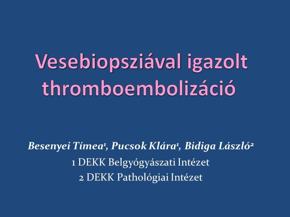 Besenyei Tímea 1, Pucsok Klára 1, Bidiga László 2 1 DEKK Belgyógyászati Intézet 2 DEKK Pathológiai Intézet