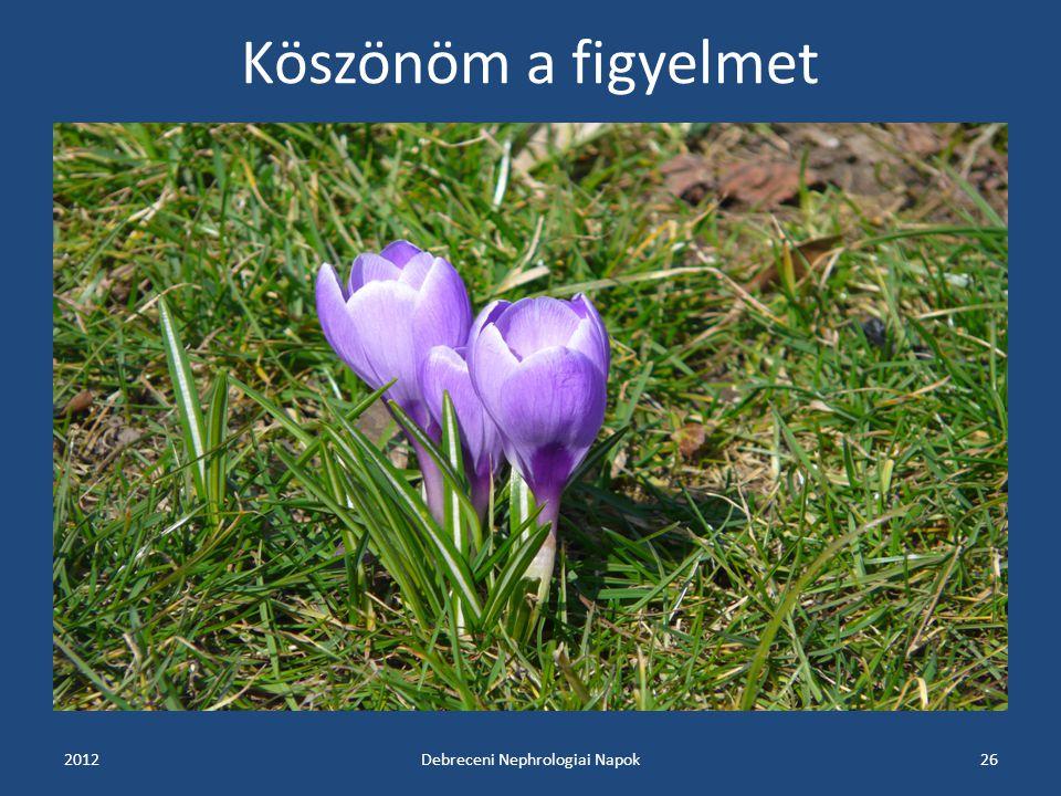 Köszönöm a figyelmet 2012Debreceni Nephrologiai Napok26