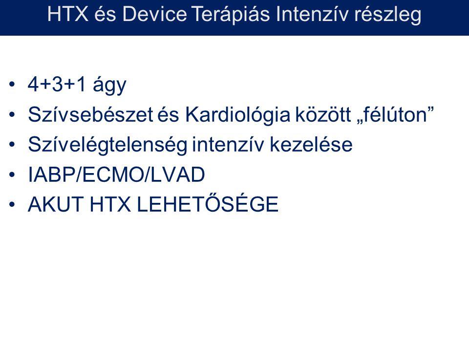 """4+3+1 ágy Szívsebészet és Kardiológia között """"félúton"""" Szívelégtelenség intenzív kezelése IABP/ECMO/LVAD AKUT HTX LEHETŐSÉGE HTX és Device Terápiás In"""