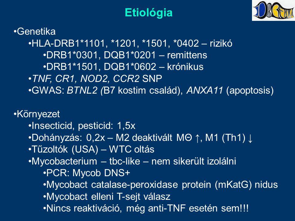 Etiológia Genetika HLA-DRB1*1101, *1201, *1501, *0402 – rizikó DRB1*0301, DQB1*0201 – remittens DRB1*1501, DQB1*0602 – krónikus TNF, CR1, NOD2, CCR2 SNP GWAS: BTNL2 (B7 kostim család), ANXA11 (apoptosis) Környezet Insecticid, pesticid: 1,5x Dohányzás: 0,2x – M2 deaktivált MΘ ↑, M1 (Th1) ↓ Tűzoltók (USA) – WTC oltás Mycobacterium – tbc-like – nem sikerült izolálni PCR: Mycob DNS+ Mycobact catalase-peroxidase protein (mKatG) nidus Mycobact elleni T-sejt válasz Nincs reaktiváció, még anti-TNF esetén sem!!!