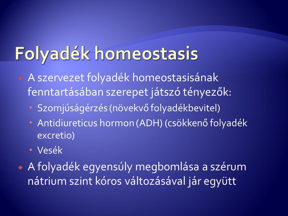  A szervezet folyadék homeostasisának fenntartásában szerepet játszó tényezők:  Szomjúságérzés (növekvő folyadékbevitel)  Antidiureticus hormon (AD