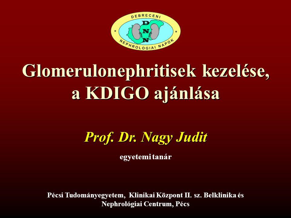 Glomerulonephritisek kezelése, a KDIGO ajánlása egyetemi tanár Prof. Dr. Nagy Judit Pécsi Tudományegyetem, Klinikai Központ II. sz. Belklinika és Neph