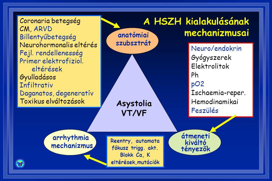 Asystolia VT/VF anatómiai szubsztrát átmeneti kiváltó tényezők arrhythmia mechanizmus Coronaria betegség CM, ARVD Billentyűbetegség Neurohormonalis el