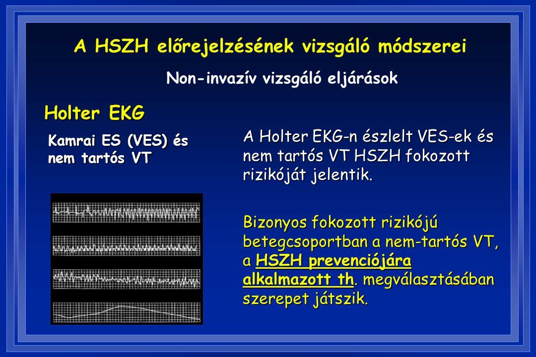 Holter EKG Kamrai ES (VES) és nem tartós VT A Holter EKG-n észlelt VES-ek és nem tartós VT HSZH fokozott rizikóját jelentik. Bizonyos fokozott rizikój