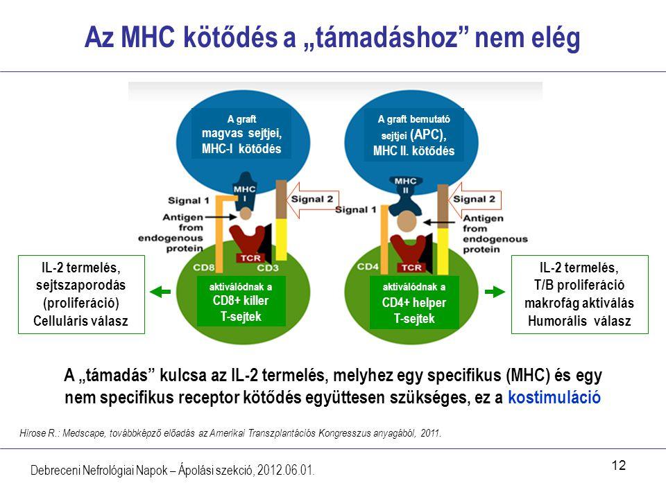 """12 Az MHC kötődés a """"támadáshoz"""" nem elég Debreceni Nefrológiai Napok – Ápolási szekció, 2012.06.01. Hirose R.: Medscape, továbbképző előadás az Ameri"""