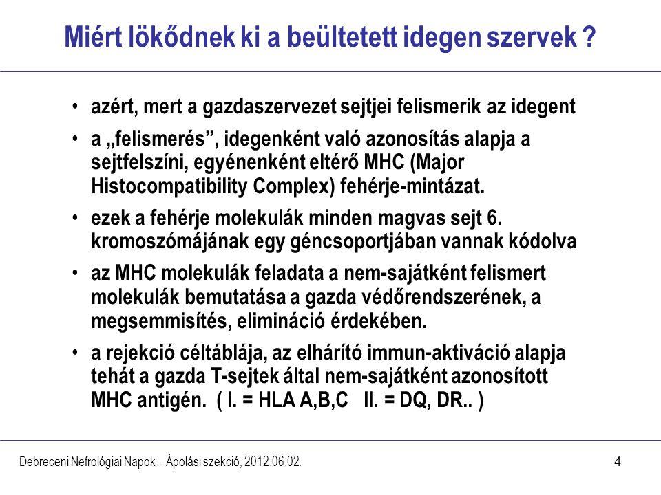 4 Miért lökődnek ki a beültetett idegen szervek ? Debreceni Nefrológiai Napok – Ápolási szekció, 2012.06.02. azért, mert a gazdaszervezet sejtjei feli