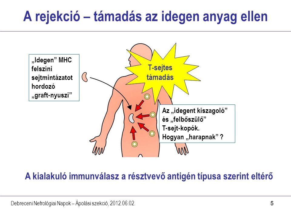 5 A rejekció – támadás az idegen anyag ellen Debreceni Nefrológiai Napok – Ápolási szekció, 2012.06.02. T-sejtes támadás A kialakuló immunválasz a rés