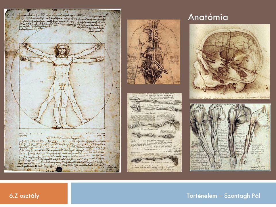 6.Z osztályTörténelem – Szontagh Pál Anatómia