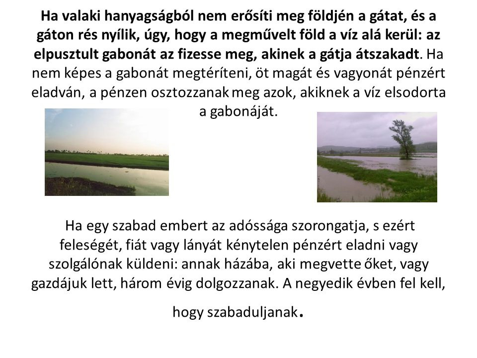 Ha valaki hanyagságból nem erősíti meg földjén a gátat, és a gáton rés nyílik, úgy, hogy a megművelt föld a víz alá kerül: az elpusztult gabonát az fi