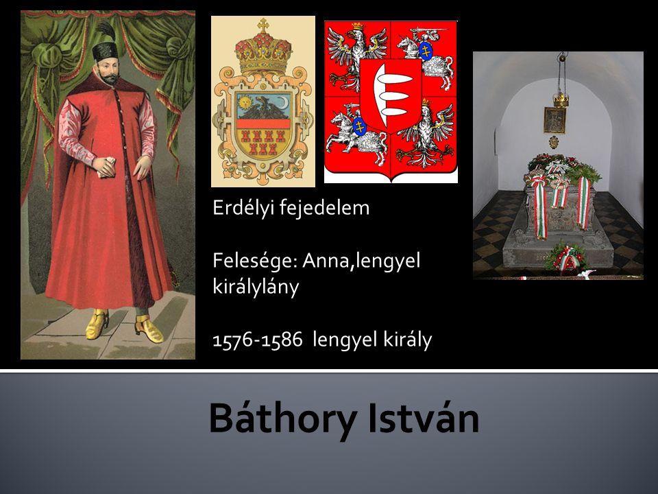 Erdélyi fejedelem Felesége: Anna,lengyel királylány 1576-1586 lengyel király