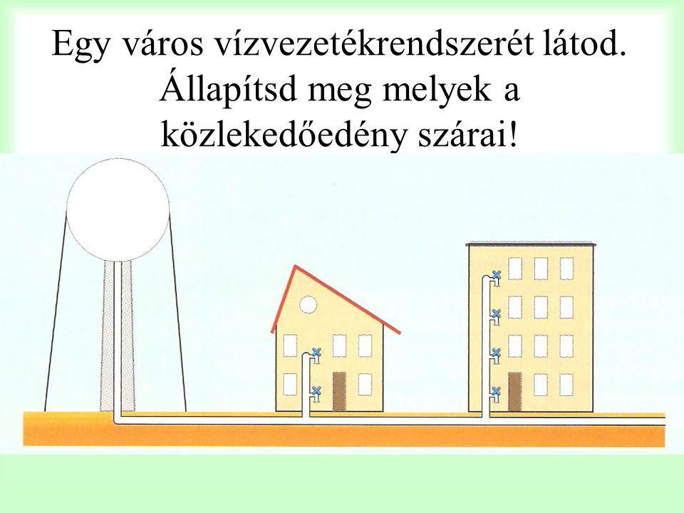 Egy város vízvezetékrendszerét látod. Állapítsd meg melyek a közlekedőedény szárai!