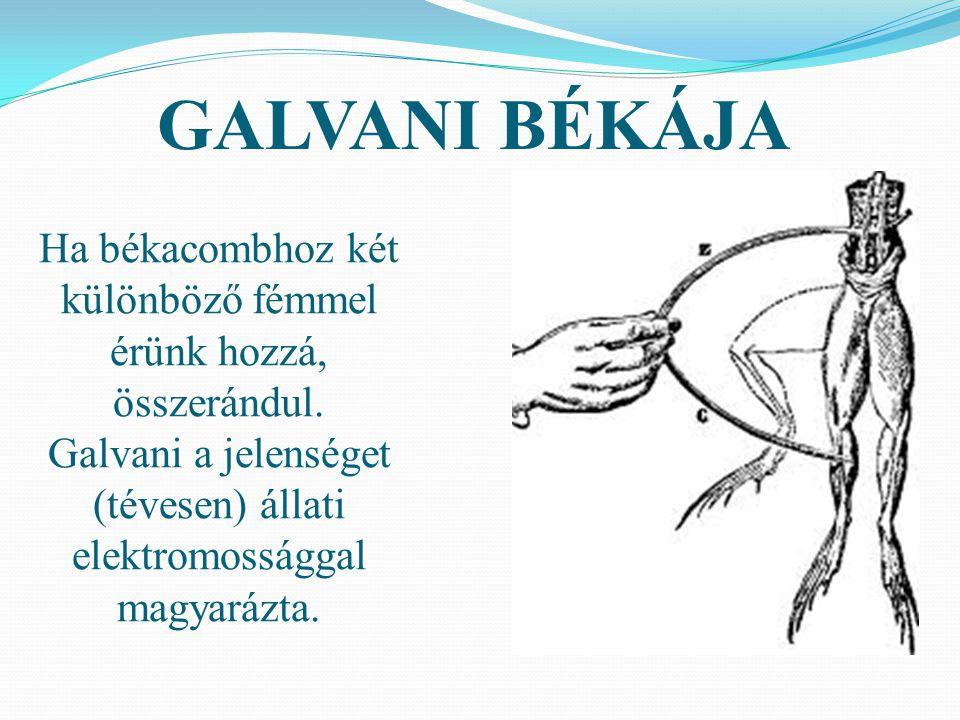Ha békacombhoz két különböző fémmel érünk hozzá, összerándul. Galvani a jelenséget (tévesen) állati elektromossággal magyarázta. GALVANI BÉKÁJA