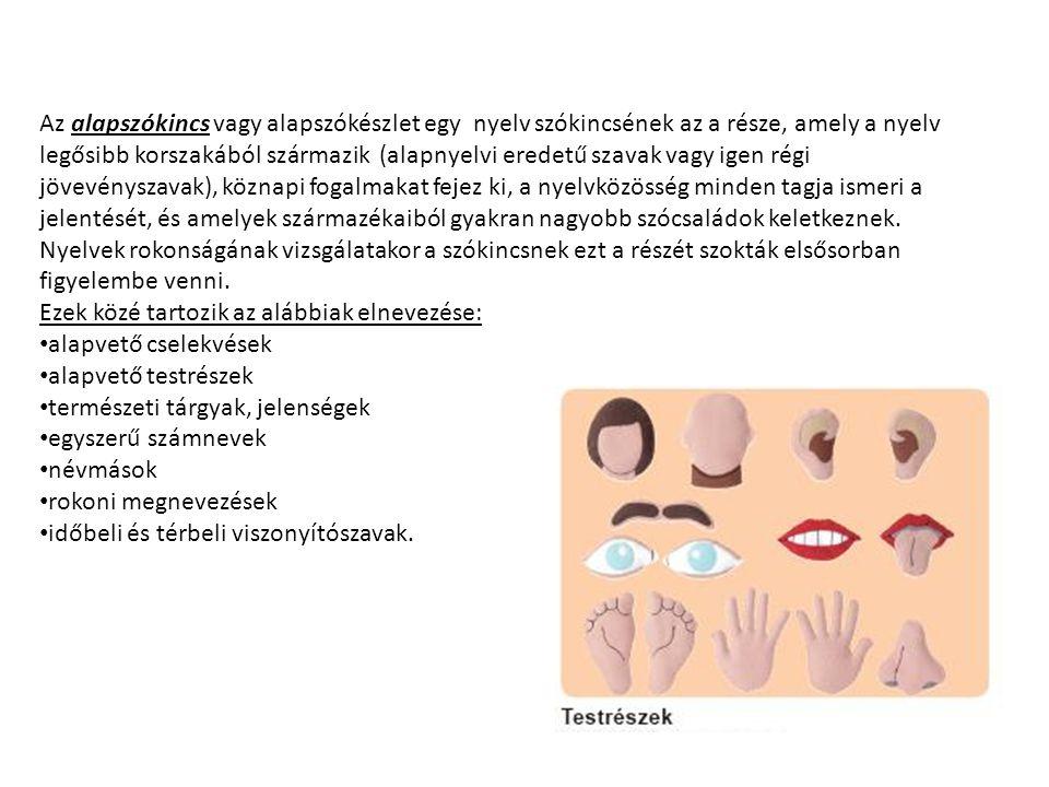 Az alapszókincs vagy alapszókészlet egy nyelv szókincsének az a része, amely a nyelv legősibb korszakából származik (alapnyelvi eredetű szavak vagy ig