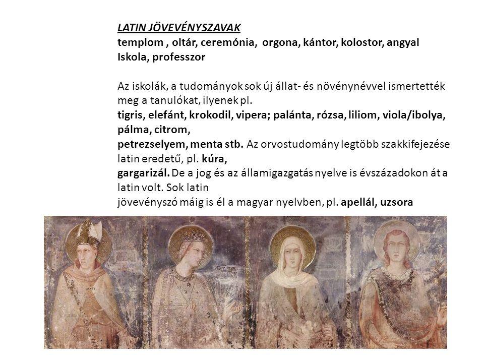 LATIN JÖVEVÉNYSZAVAK templom, oltár, ceremónia, orgona, kántor, kolostor, angyal Iskola, professzor Az iskolák, a tudományok sok új állat- és növényné