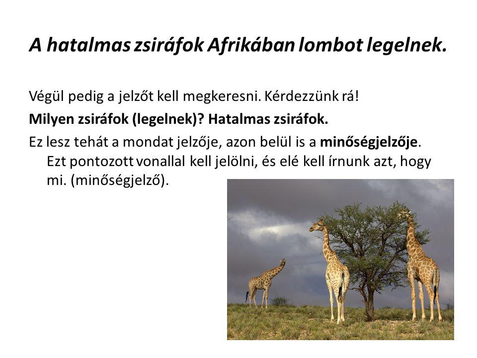 A hatalmas zsiráfok Afrikában lombot legelnek. Végül pedig a jelzőt kell megkeresni. Kérdezzünk rá! Milyen zsiráfok (legelnek)? Hatalmas zsiráfok. Ez