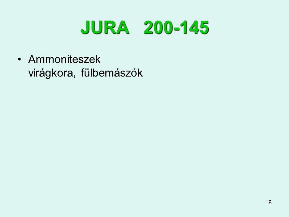 18 JURA 200-145 Ammoniteszek virágkora, fülbemászók