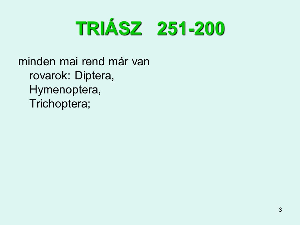 3 TRIÁSZ 251-200 minden mai rend már van rovarok: Diptera, Hymenoptera, Trichoptera;