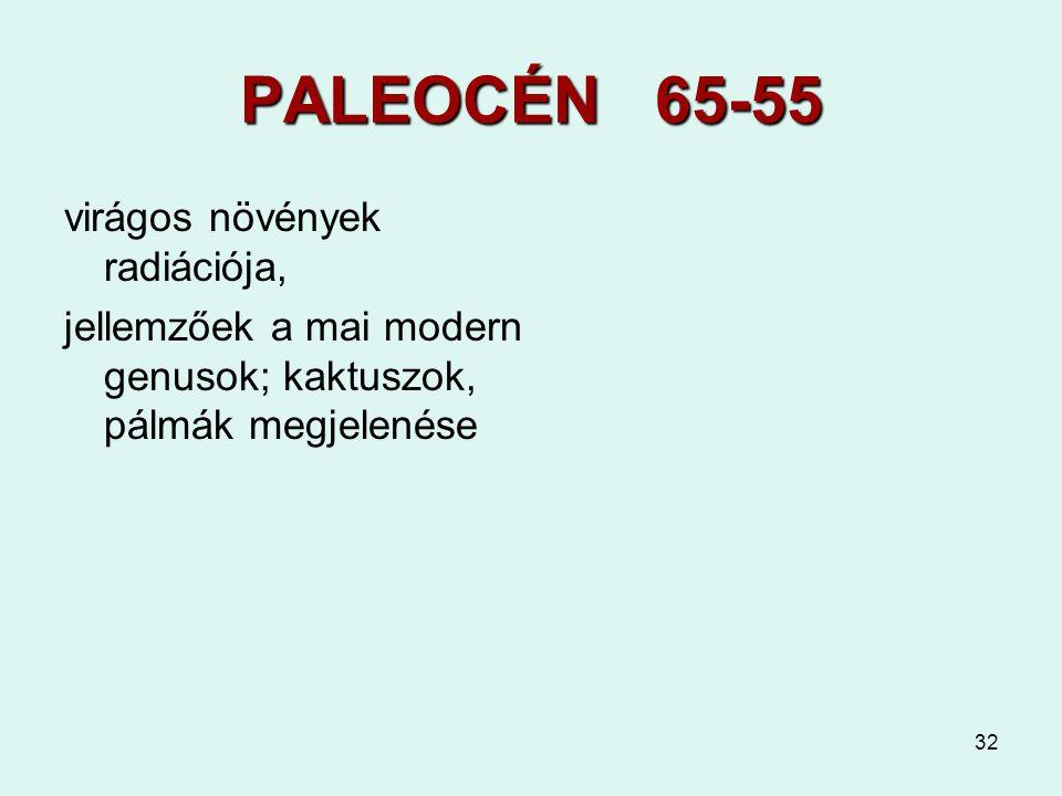 32 PALEOCÉN 65-55 virágos növények radiációja, jellemzőek a mai modern genusok; kaktuszok, pálmák megjelenése