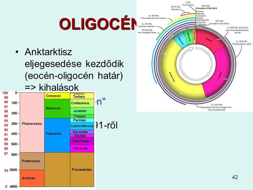 42 OLIGOCÉN 35-24 Anktarktisz eljegesedése kezdődik (eocén-oligocén határ) => kihalások