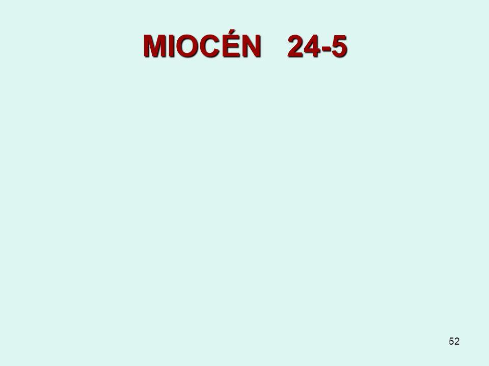 52 MIOCÉN 24-5