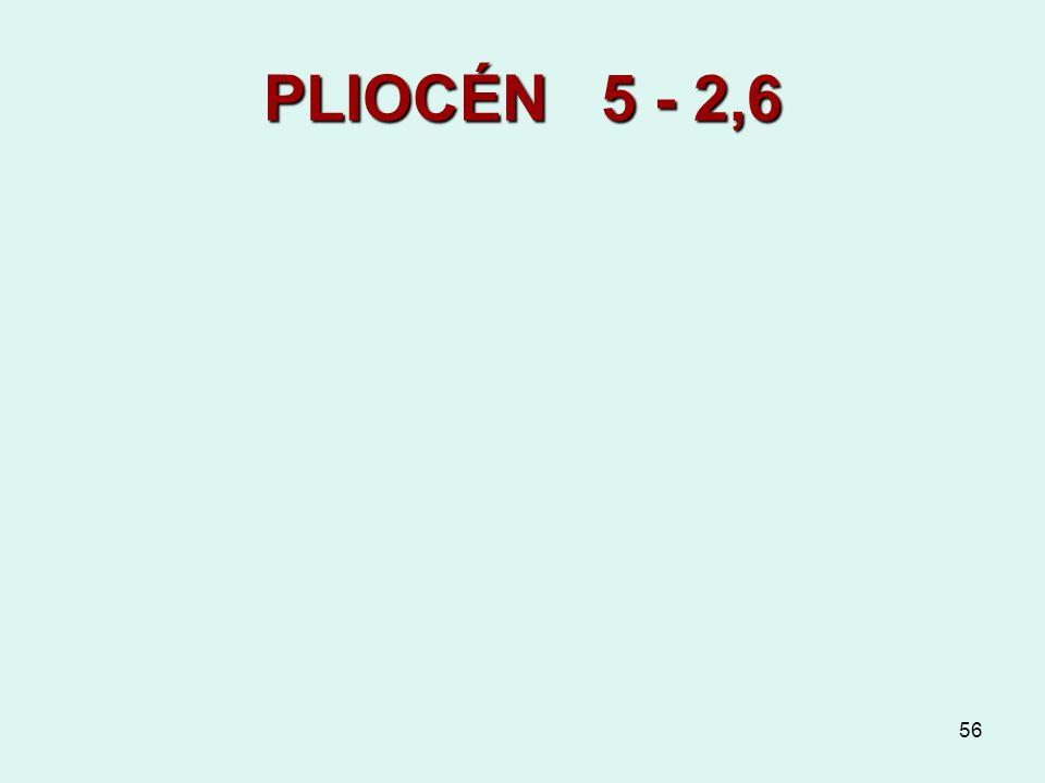 56 PLIOCÉN 5 - 2,6